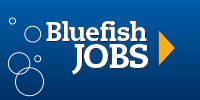 Get hooked at www.bluefishjobs.com
